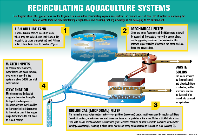 Aquaculture Tip Of The Mitt Watershed Council