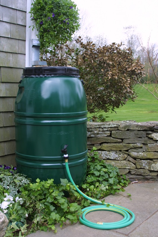 Rain Barrels Tip Of The Mitt Watershed Council