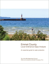 Emmet County Gaps Analysis